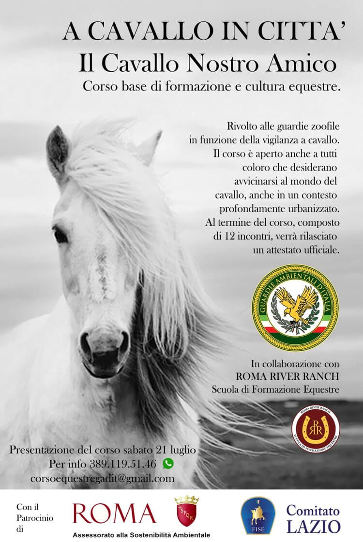 1-a-cavallo-in-citta-il-cavallo-nostro-amico-roma-river-ranch