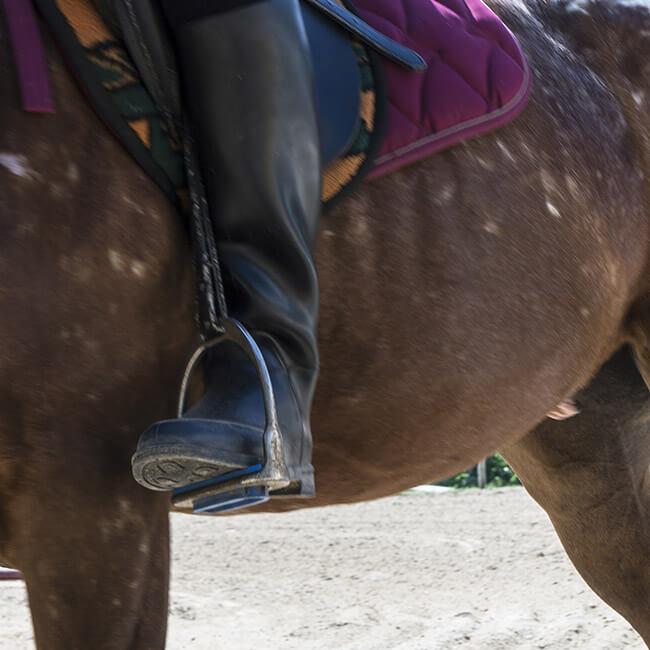 4-roma-river-ranch-scuola-di-equitazione-roma